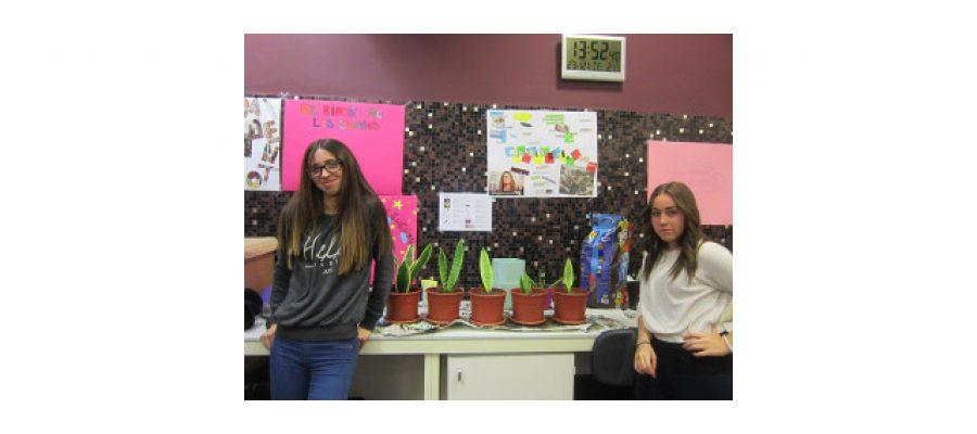¡Nuestras plantas se reproducen!