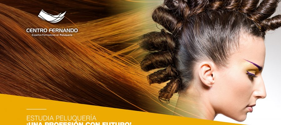 Estudiar en Centro Fernando, una formación orientada al empleo.